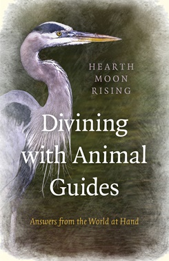 divining with animal guides