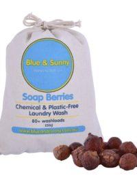 Soap Berries