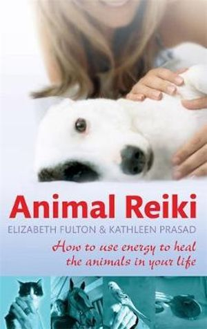 Animal Reiki- How to use energy to heal the animals in your life